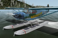 Piper PA-18 Super Cub package XP10